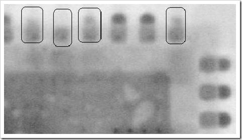 QFN_X-ray03