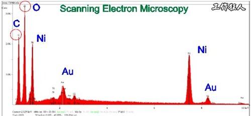 電路板沾污。Scanning Electron Microscopy